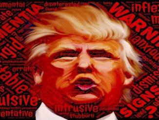 Trump, nuevo presidente de los EEUU